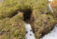 Глава Татарстана пригрозил изымать землю, выведенную из сельхозоборота