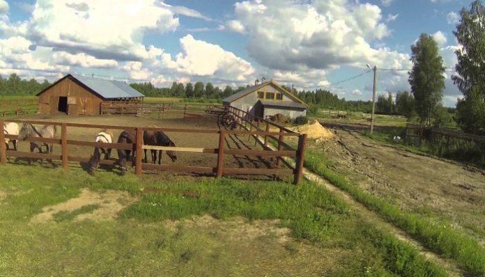 Госдума намерена разрешить фермерам строить жилье на своей земле