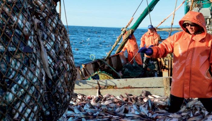Какую рыбу и как мы будем есть через двадцать лет?