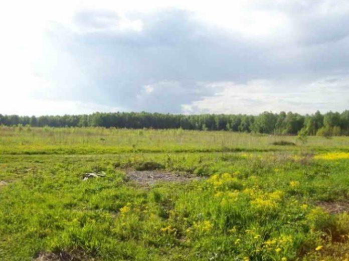 Калининградские власти предложили признать невостребованными земли, пустующие три года