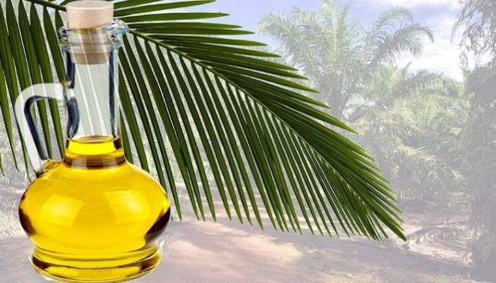 Комментарий. Что делать с пальмовым маслом?