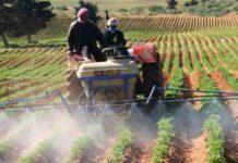 Ливия обсуждает вопрос поставок в страну российской сельхозпродукции