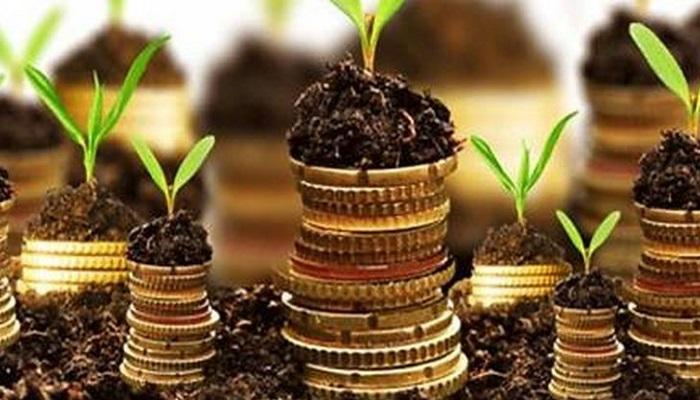 МСХ поддержал выведение госсубсидий на агрострахование из состава единой сельхозсубсидии с 2020 г