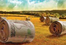 Минсельхоз РФ пересматривает механизмы агрострахования, обсуждается создание госкомпании