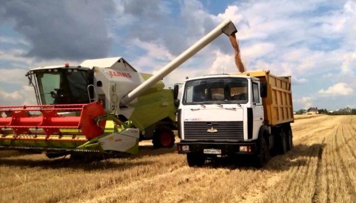 Минсельхоз: на 14 сентября собрано 88,2 млн тонн зерна