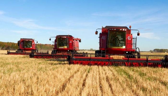 Минсельхоз: урожай 2018 года позволит полностью обеспечить Россию зерном и хлебом