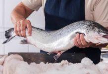 На Камчатке достигнут рекорд по вылову лосося за более чем сто лет