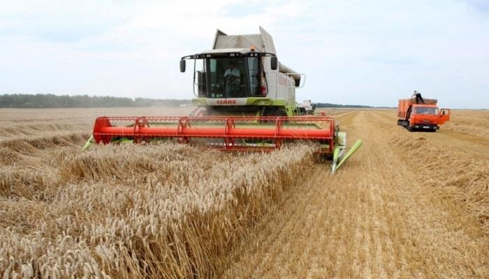 Новосибирские власти задумались о возвращении режима ЧС в аграрном секторе