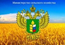 Общая сумма господдержки АПК РФ в 2019 году может составить 302 млрд рублей