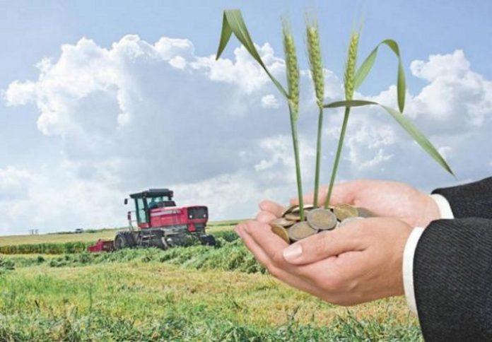 Основные секторы экономики демонстрируют рост