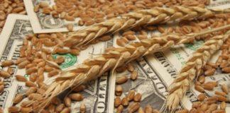 По данным ряда аналитиков, экспорт зерна в сентябре