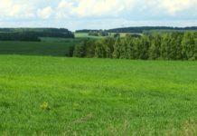 Права владельцев земельных участков будут расширены