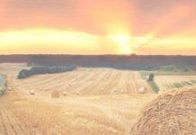 Президент НСА Корней Биждов информировал РСПП о проблемах развития агрострахования