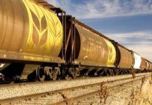 РЭЦ: субсидирование транспортировки продукции АПК на экспорт с 2019 года вырастет в 2-3 раза