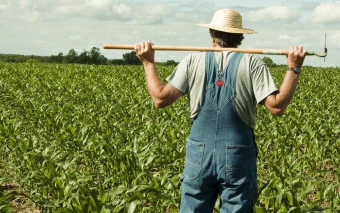 С 2019 года аграрии, проработавшие на селе больше 30 лет, начнут получать повышенную пенсию