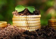 Сельхозсектор Курской области с начала года увеличил объем кредитования в 1,5 раза