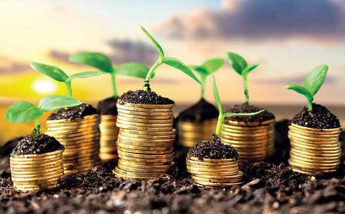 Сельское хозяйство для правительства по-прежнему остается в приоритете