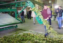 В Чувашии успешно прошли испытания первого российского хмелеуборочного комбайна