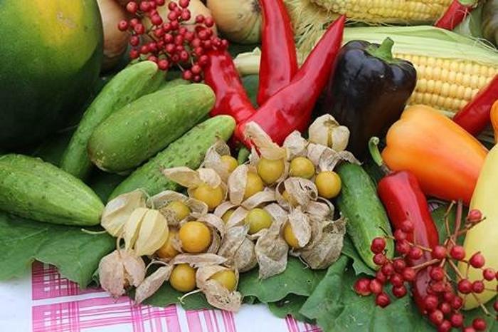 В Ижевске пройдет ярмарка садоводов и фермеров