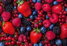 В Нижегородской области проектом года в сфере АПК признан ягодный сад