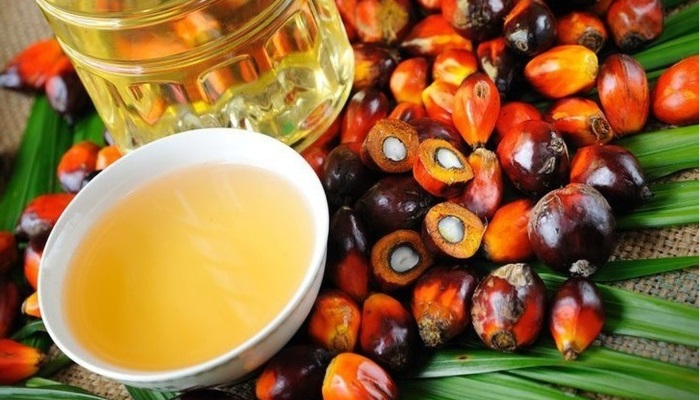 В Россельхознадзоре сообщили о фальсификации молочной продукции с помощью пальмового масла
