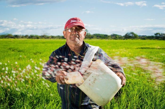 В России наберется около миллиона тех селян, которые получат 25% прибавки к пенсии, согласно предложениям президента Владимира Путина