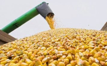 В России продолжается сбор урожая