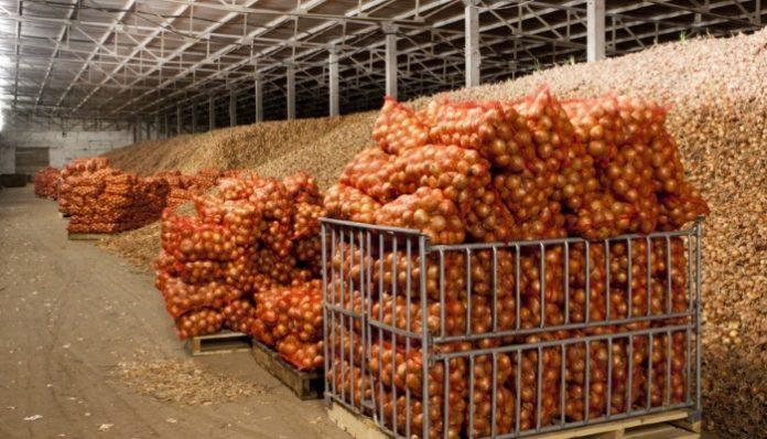 Власти Кубани предложили субсидировать овощехранилища на федеральном уровне