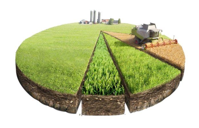 Законопроект об упрощении сделок граждан с долевыми сельхозземлями внесен в Госдуму 1