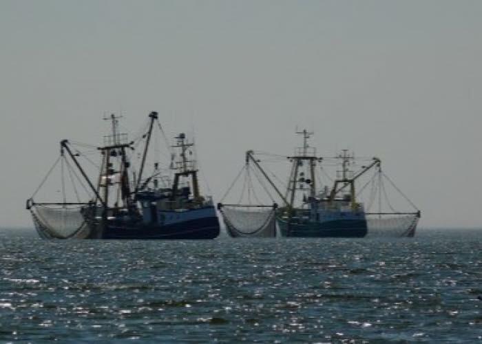 Росрыболовство прорабатывает программы субсидирования мало- и среднетоннажного флота