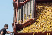 Аграрное страхование отделяется от единой бюджетной поддержки АПК