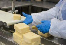 «Агрокомплекс» вложил 9,6 млрд рублей в сыродельный завод