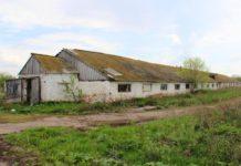 Более 10 заброшенных ферм планируют восстановить в Подмосковье до конца года