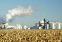 Глубокая переработка зерна и промышленная биотехнология