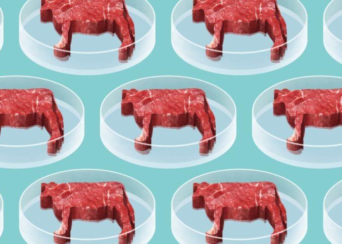 Искусственное мясо из упаковок для IKEA