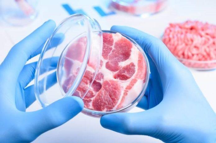 Искусственное мясо может появиться на прилавках всего мира