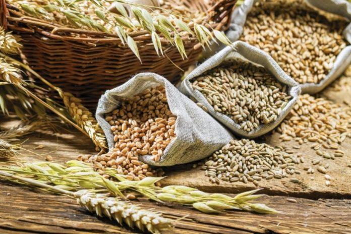 Из госфонда будет продано1,5 млн тонн зерна