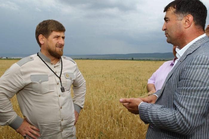 Кадыров наложил запрет на изменение категорий сельхозугодий за исключением инвестпроектов
