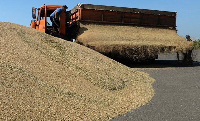 Крыму разрешили закупить в госфонде 82 тыс тонн зерна
