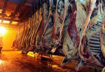 Кувейт снял запрет на импорт мяса из России
