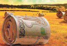 Медведев распорядился контролировать поступление денег на поддержку сельхозпроизводителей