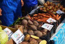 На рязанских ярмарках выходного дня реализовано 26 тонн картофеля и овощей