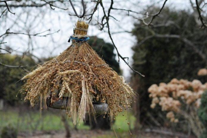 Никто лучше птиц не обнаружит и не уничтожит спрятавшегося в укромном месте вредителя – привлекайте пернатых в сад!