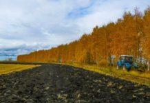 О ходе осенних полевых работ в Рязанской области