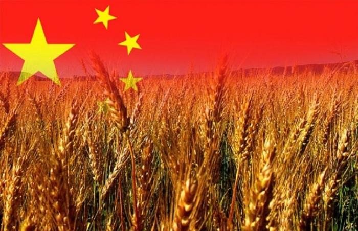 Китай усиливает роль науки в модернизации сельского хозяйства