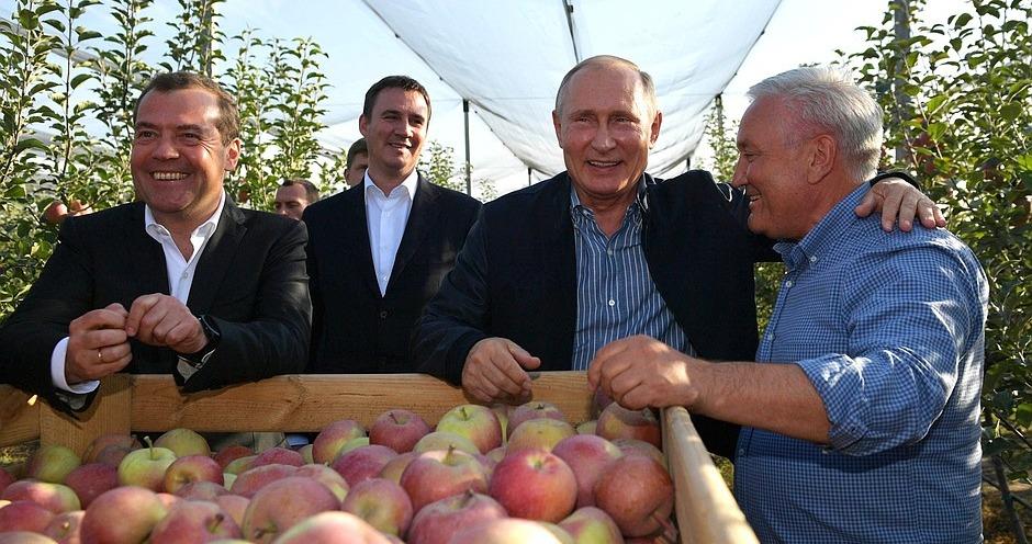 Путин о росте экспорта сельхозпродукции: «Это прорыв»