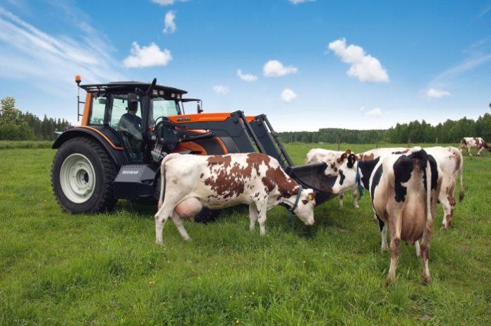 Путин заверил, что программа развития сельских территорий продолжится после 2021 года