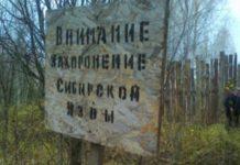 Роспотребнадзор предупредил об угрозе сибирской язвы на Украине