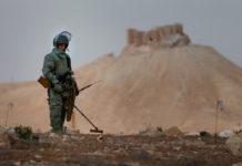 Россия направит 3 млн долларов на восстановление сельского хозяйства Сирии