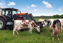 Сельхозпроизводители не вправе отказаться от применения нулевой ставки по налогу на прибыль